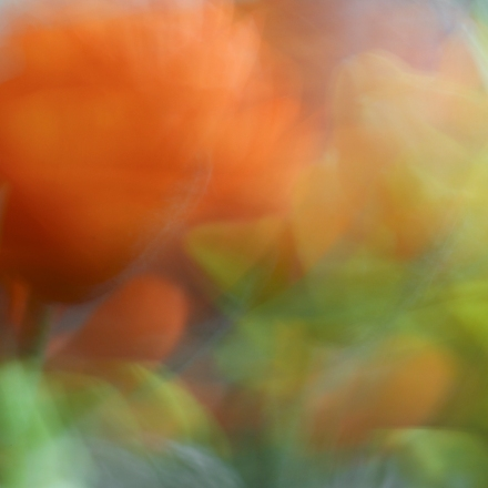 Spring abstract blog